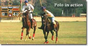 polo-european-sports-network-rmc-image-1001.jpg